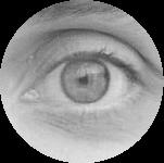 oeil-raphael